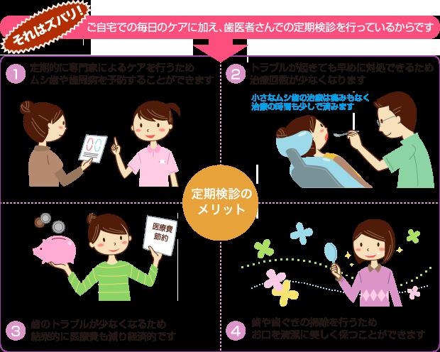診療科目 定期検診 秋田の歯医者はクローバーデンタル 小児歯科 ...